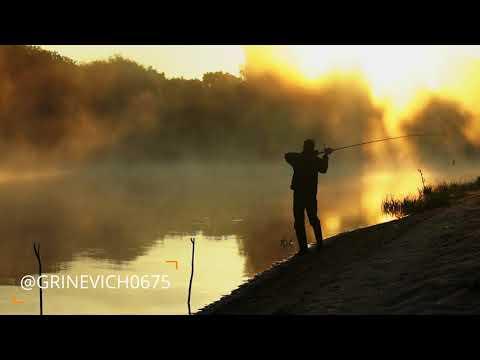 Самые тёплые вспоминая о рыбалке в Белорусском Полесье 🇧🇾❤️