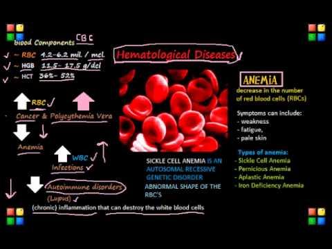 NCLEX Review on Hematology