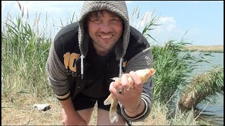 Рыбалка на Маныче- даже змеи ловятся!