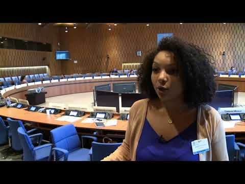Temi Mwale, UNESCO Youth Forum