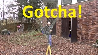 Catching Birds With The Slingshot Rubber Based Net Gun