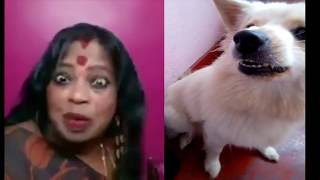 INJI IDUPALAGI Dubsmash Chitra Kajal & Funny Dog Latest Video Troll