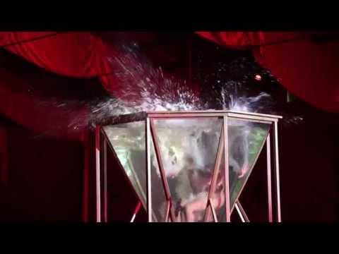 Trailer do filme Ballet Aquatique