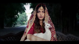 Download ADIL OMAR x TALAL QURESHI (SNKM) - NIGHAT & PARAS MP3 song and Music Video