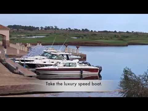 Amazing: Luxury boat ride and bird watching in Uganda, Entebbe.