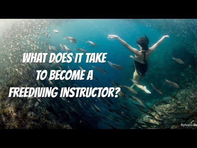 What Does It Take to Become A Freediving Instructor? - My Experience with a Zero to Hero Internship