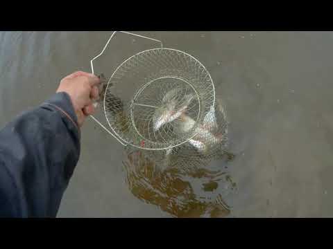 И снова рыбалка на Чепце.