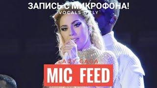 """Голос с микрофона Леди Гаги - """"Alejandro"""" (Голый Голос)"""
