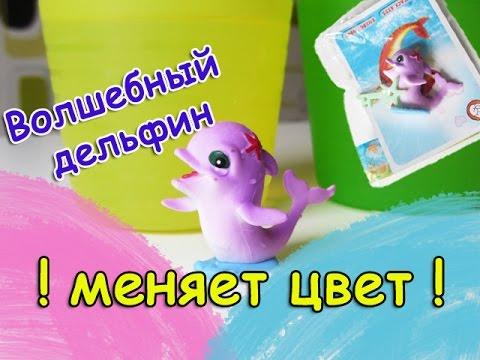Игрушка меняет цвет в воде - Волшебный дельфин. Видео про игрушки. Открываем игрушки.