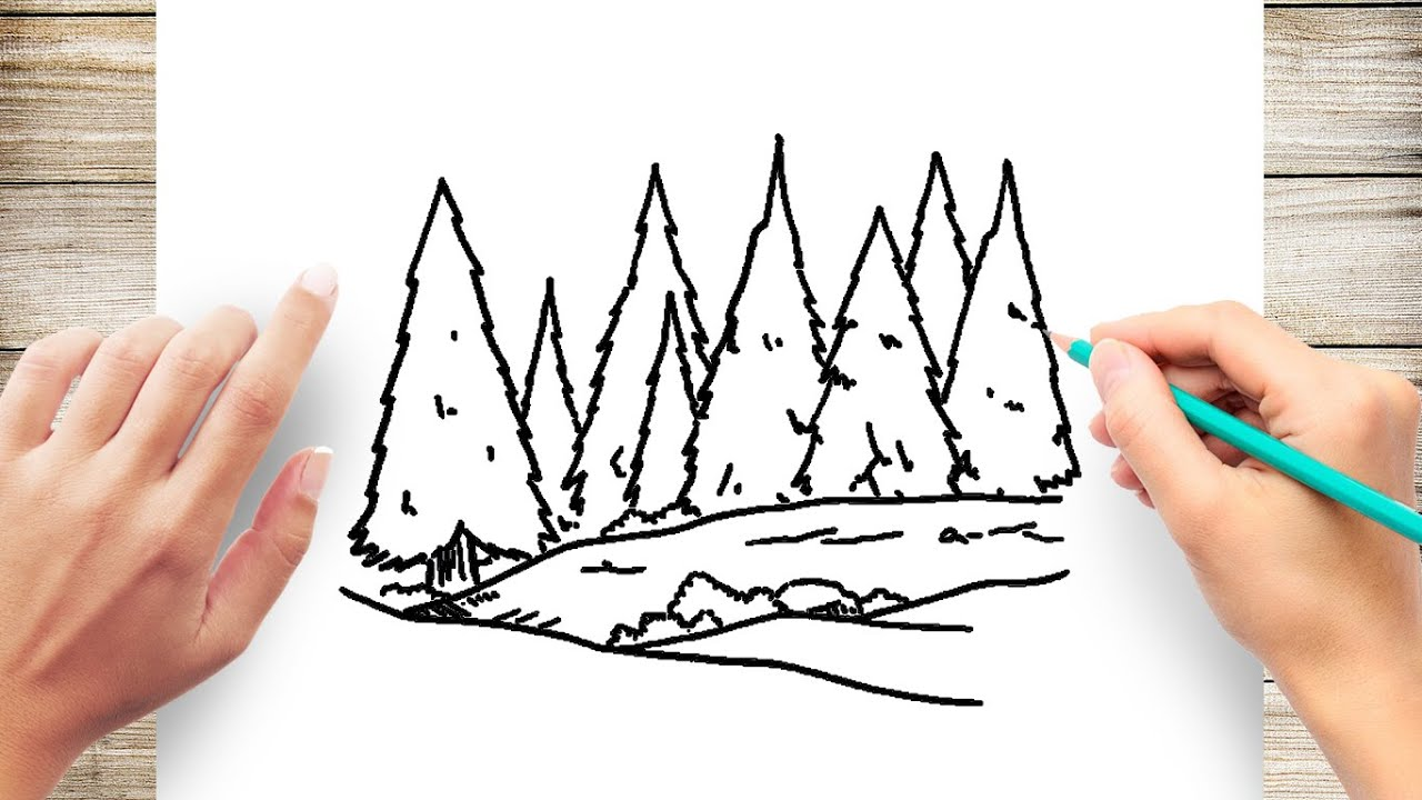 Watercolor background with blue coniferous forest beautiful watercolor background with mystery blue coniferous forest. How To Draw Pine Forests Step By Step Youtube