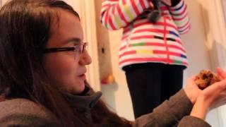 Реакция Кати на новорожденную морскую свинку!!!
