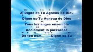 Digne es-Tu Agneau de Dieu-2013.mp4