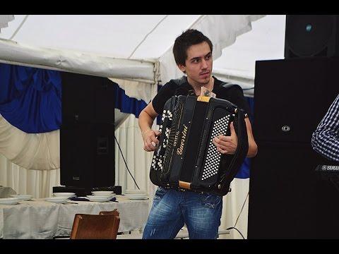 Aca Nikolic Brajic - DA SE NAJEZIS - ! ! !  2015