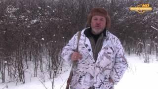 видео Молодому рыболову на заметку. Голавль зимой