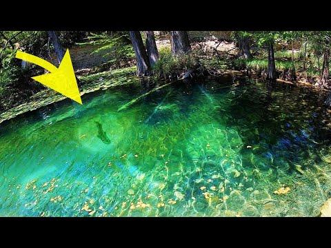 INSANE CREEK FISHING In CRYSTAL CLEAR WATER!!