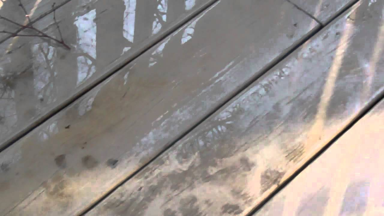 Wood siding mold on wood siding for Removing mold from exterior wood siding