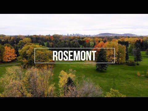 ROSEMONT-LA PETITE-PATRIE, MONTRÉAL
