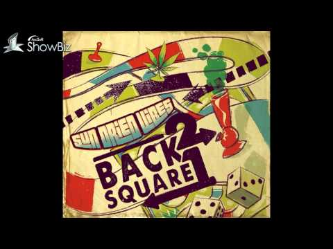 """Sun-Dried Vibes 