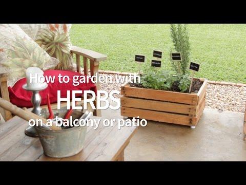 Garden With Herbs On A Balcony Or Patio, Herb Garden Patio