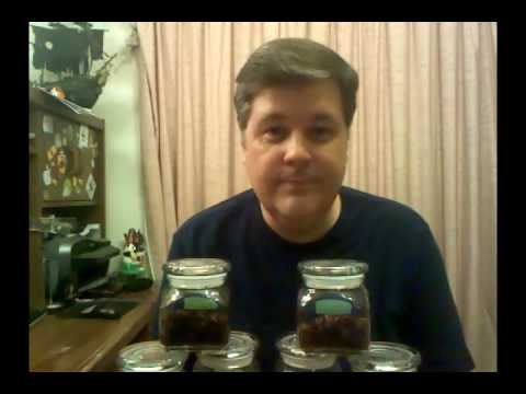 DIY Mystery Mason Jar Date from YouTube · Duration:  1 minutes 1 seconds