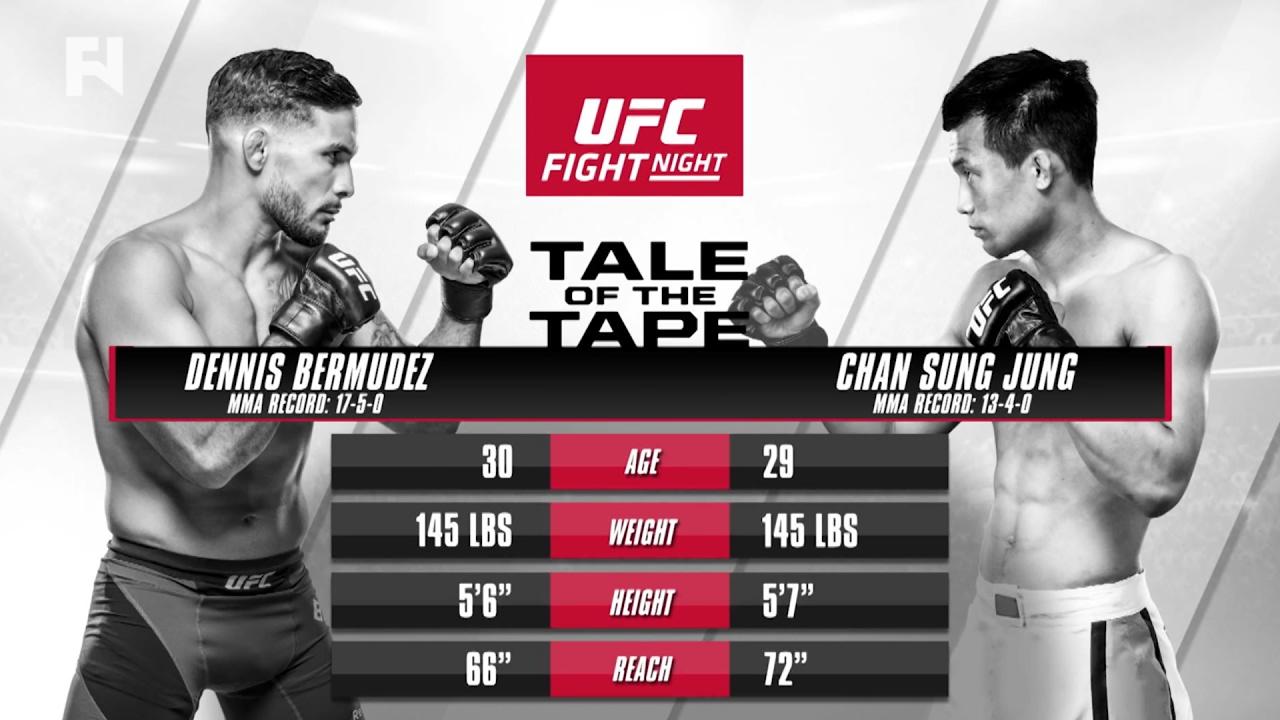 UFC Fight Night Houston Previe...