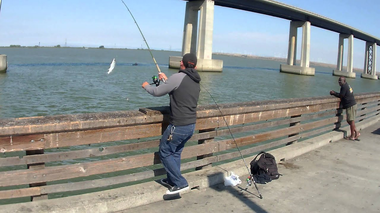 Antioch pier fishing 4 youtube for Fishing without a license california