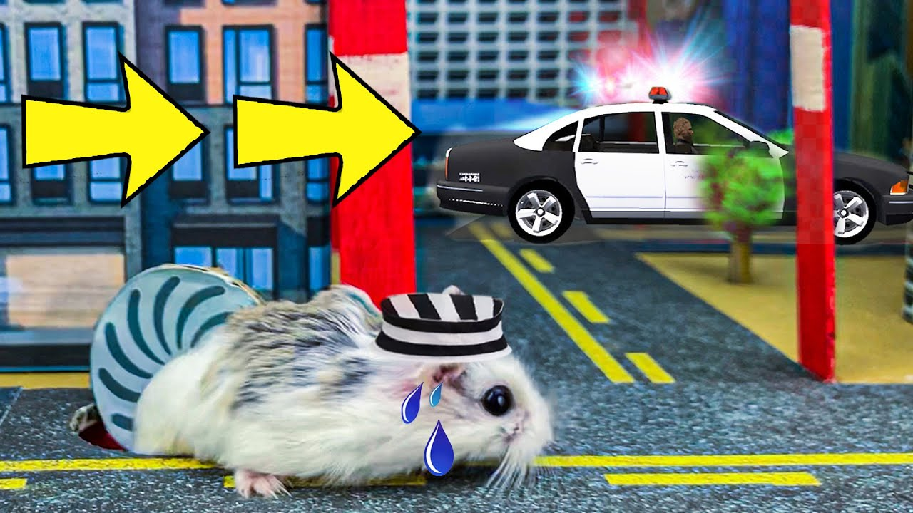 🐹🐍🦂 Escape Maze With Traps Hamster Police Pets 🐹 In Hamster Stories Escape