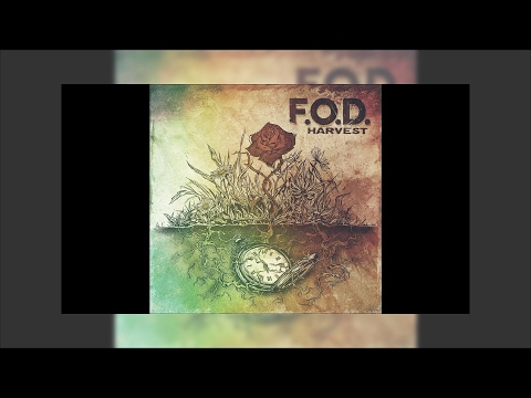 F.O.D.  - There's A Place (where we can go to)
