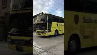 バス.観光バス スマイルコーポレーション