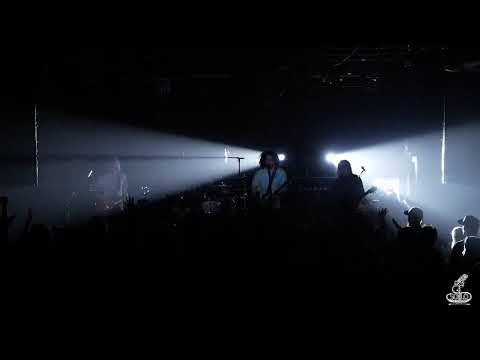 Goose and Pigeons Playing Ping Pong  Live at Sessions Music Hall