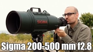 Sigma 200-500 mm f2.8: análisis