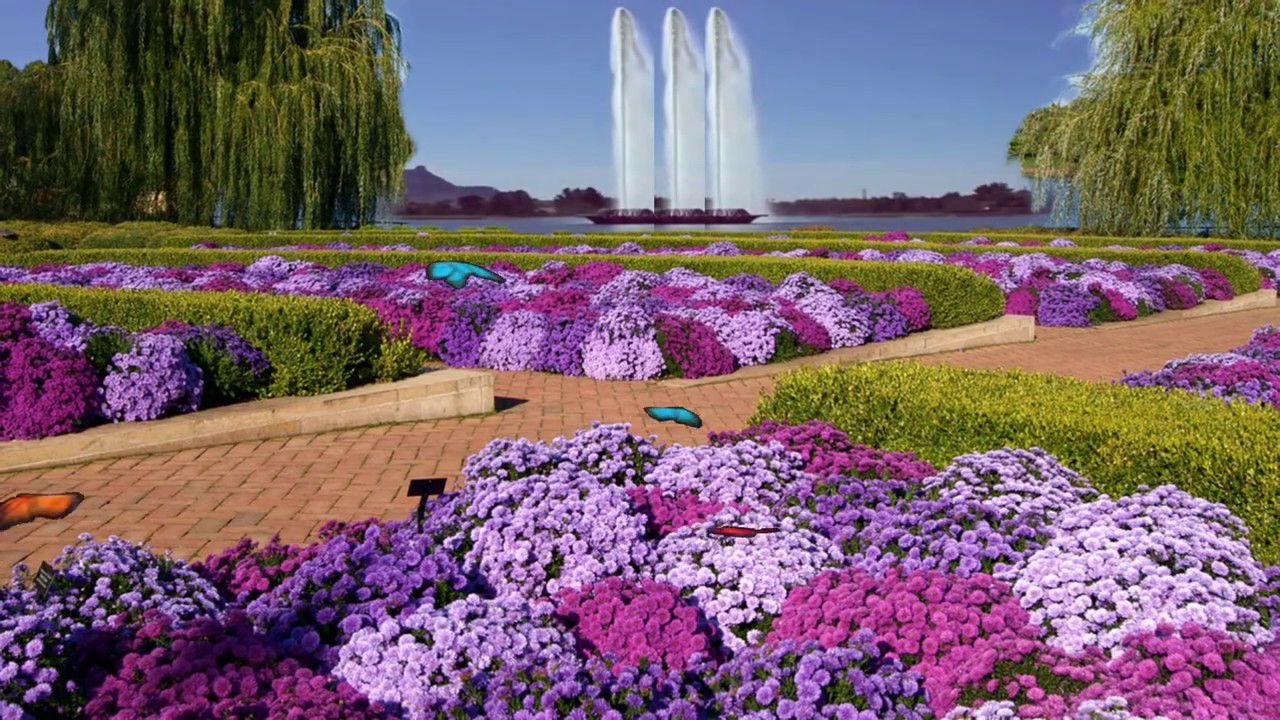 Beautiful Flower Garden Video Garden Background Youtube
