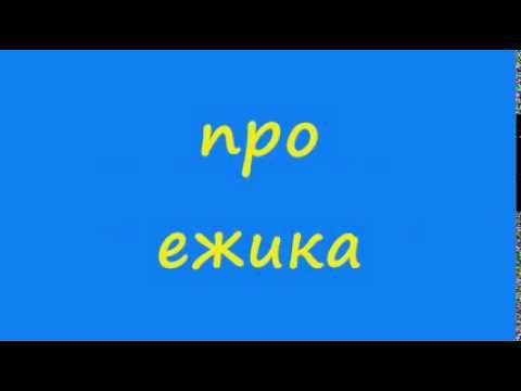 Ёжик застрял в круассане (1 видео)