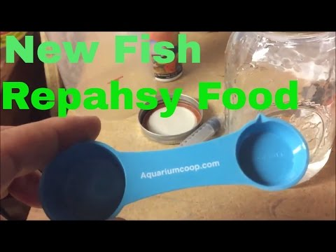 Fish Room Update New Fish and Repashy Review Breeding for Profit