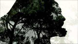 Fjäder - Vingar [SE#002]