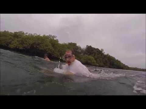 Deep Board  (Bocas del Toro,Panama)