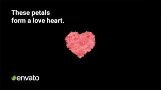 This After Effects plugin turns rose petals into a love heart