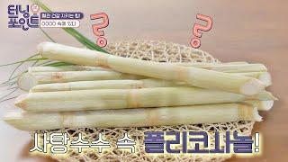 [혈관 건강] 사탕수수 속 '폴리코사놀'로 고혈압 By…
