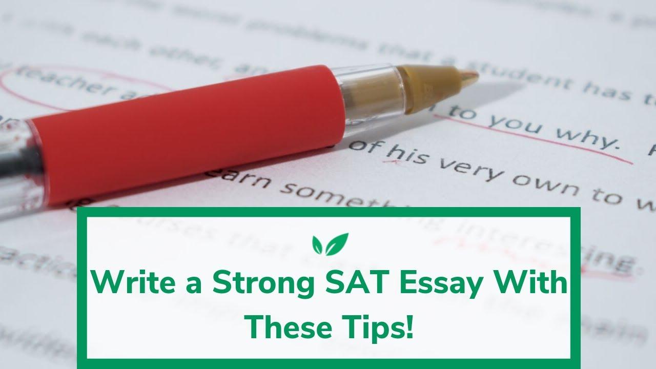 Oppbyggingen av et essay help