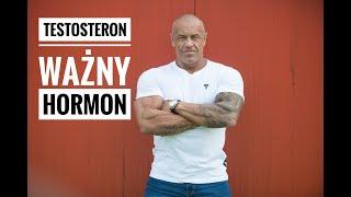 TESTOSTERON - męski hormon