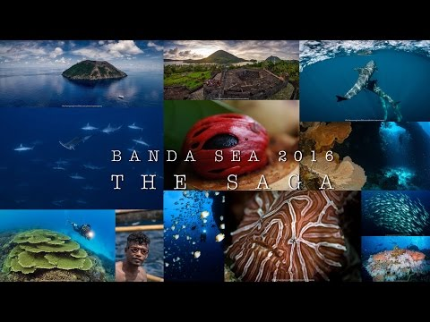 Banda sea 2016 | The Saga