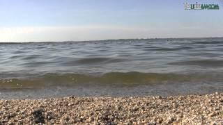 Зеренда - немного озера,  центра и больших одуванчиков)