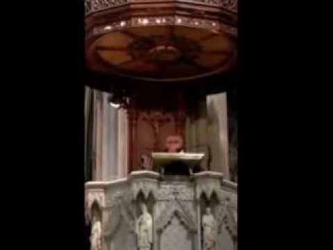 St Patrick's Cathedral Homily by Fr Mario Conte OFM Conv