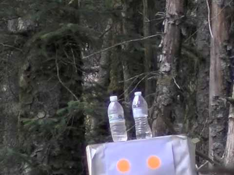 Shooting my Beeman R7 at 60yds - YouTube