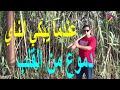 طريقه قطع الغاب للكولة والناي وشرح تنظيف الخامات شرح الفنان صابر كولة