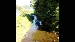 大八賀川のあい鴨.3gp