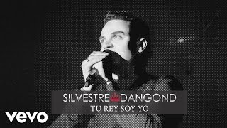 Silvestre Dangond - Tu Rey Soy Yo (Cover Audio)