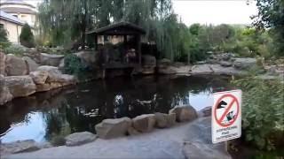 видео парк лога старая станица