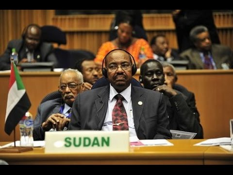 U.N. elects Sudan as Vice-Chair of Committee on NGOs