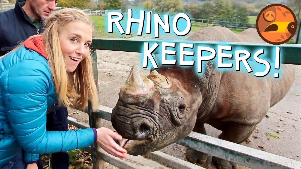 Rhino Keepers for a Day! | Maddie Moate